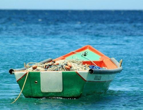"""3. Sonntag im Jahreskreis """"Ich werde euch zu Menschenfischern machen"""""""